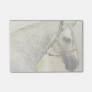 Dapple Gray Andalusian Horse Post-it® Notes