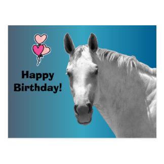 Dapple Grey Horse Postcard