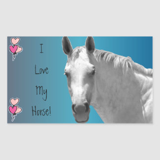 Dapple Grey Horse Rectangular Sticker