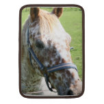 "Dappled Appaloosa Horse 13"" MacBook Sleeve"