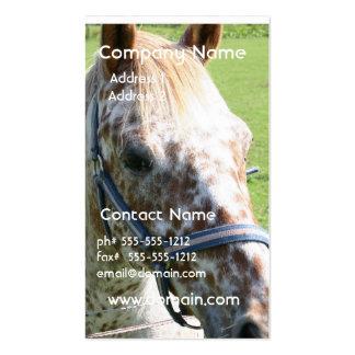 Dappled Appaloosa Horse Business Card