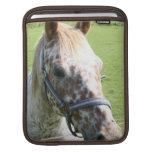 Dappled Appaloosa Horse iPad Sleeve