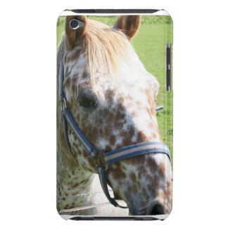 Dappled Appaloosa Horse iTouch Case