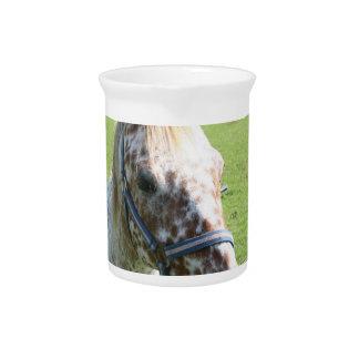 Dappled Appaloosa Horse Pitcher