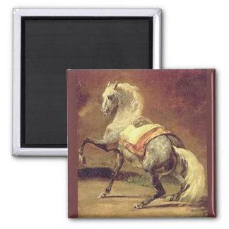 DAPPLED GREY HORSE MAGNET