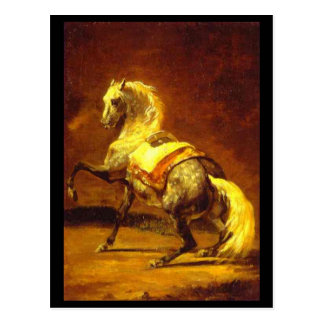 DAPPLED GREY HORSE POSTCARD