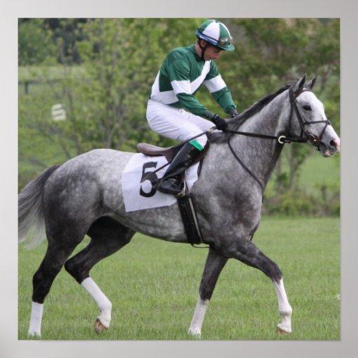 Dappled Grey Race Horse Poster