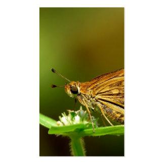Dardo de la hierba del Tamil de la mariposa con el Tarjeta Personal