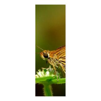 Dardo de la hierba del Tamil de la mariposa con el Plantillas De Tarjetas Personales
