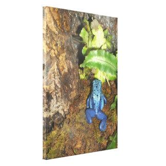 Dardo venenoso azul impresión en lienzo
