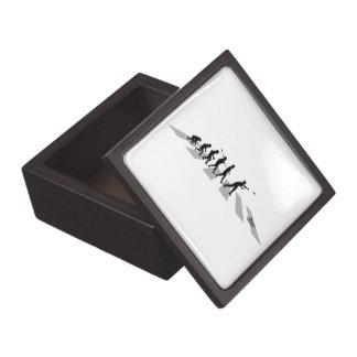 Dardos del césped cajas de regalo de calidad