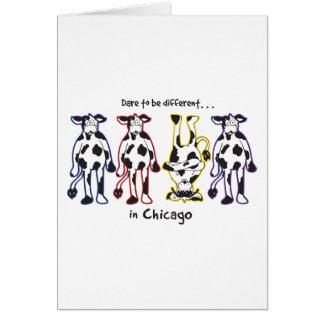 DARE-CHICAGO CARD