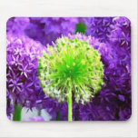 Dare to Be Different Lime Green Purple Flowers Mouse Pad