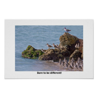 Dare to Be Different Poster or Print