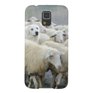 Dare to be different! Sheepdog Saying ... Galaxy S5 Case