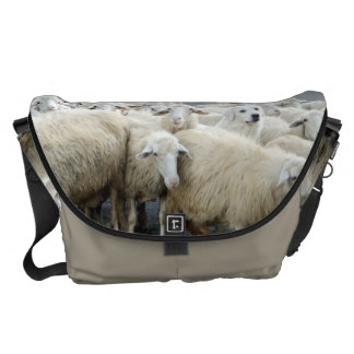 Dare to be different! Sheepdog Saying ... Messenger Bags