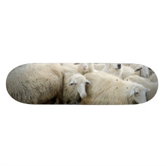 Dare to be different! Sheepdog Saying ... Custom Skateboard