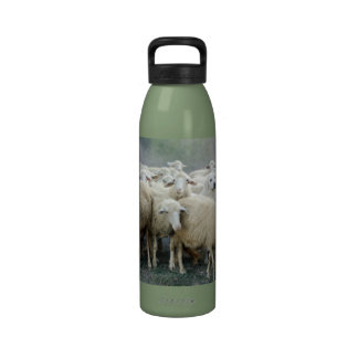 Dare to be different! Sheepdog Saying ... Reusable Water Bottle