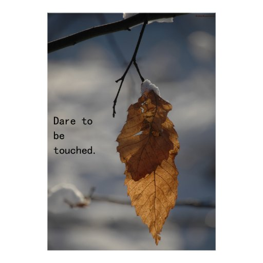 Dare to be touched poster