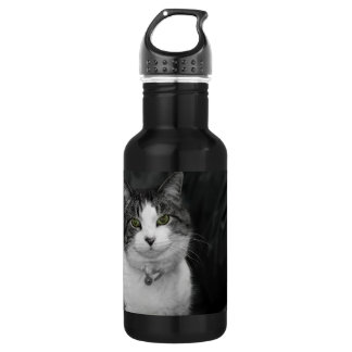 Dare to Look Into My Green Eyes Stainless Steel Water Bottle