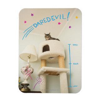 Daredevil Cat Flexible Magnet