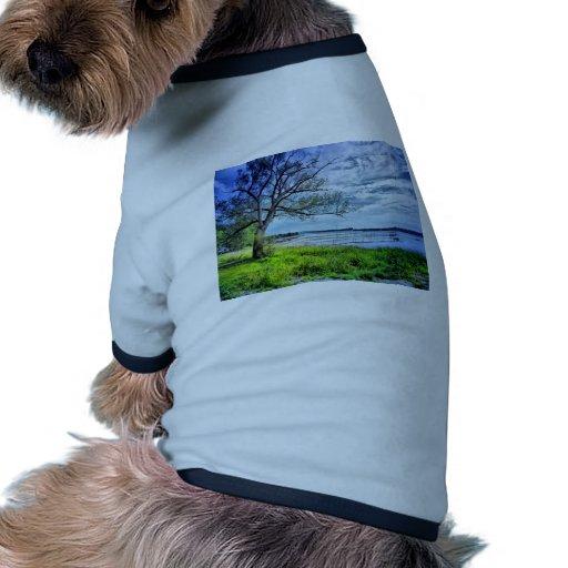 d'Argenteuil de St-Andre Camiseta Con Mangas Para Perro