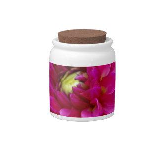 Daring Candy Jars