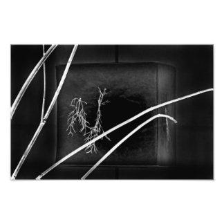 Dark Ages. Photo Print