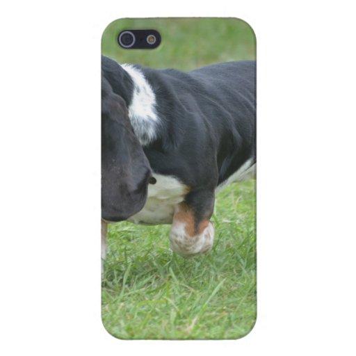 Dark Basset Hound Dog iPhone 5/5S Covers