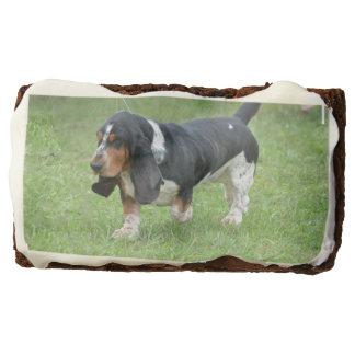 Dark Basset Hound Dog Rectangular Brownie