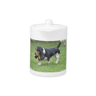 Dark Basset Hound Dog