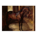 Dark Bay Horse in the stable Postcard