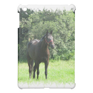 Dark Bay Horse iPad Case