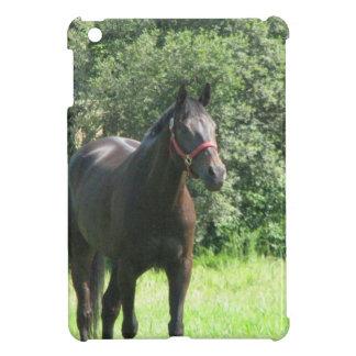 Dark Bay Horse iPad Mini Cases
