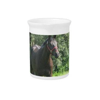 Dark Bay Horse Pitcher