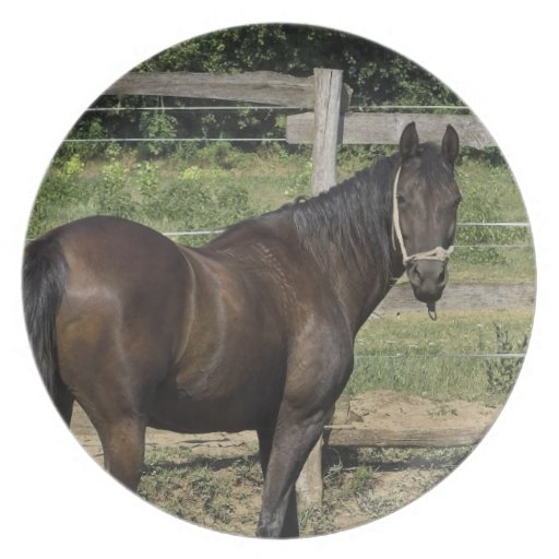 Dark Bay Horse  Plate