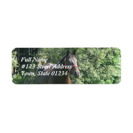 Dark Bay Horse Return Address Label