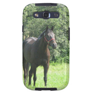 Dark Bay Horse Samsung Galaxy Case Samsung Galaxy S3 Covers