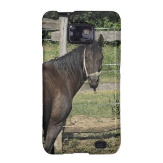 Dark Bay Horse  Samsung Galaxy Case Samsung Galaxy S2 Covers