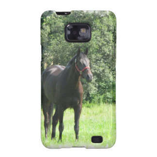 Dark Bay Horse Samsung Galaxy Case Samsung Galaxy SII Cover