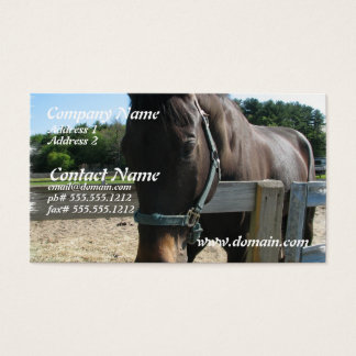 Dark Bay Thoroughbred Horse Business Card