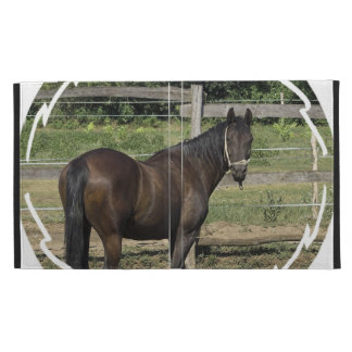 Dark Bay Thoroughbred Horse iPad Folio Covers