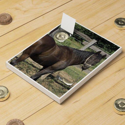 Dark Bay Thoroughbred Horse Chocolate Countdown Calendar
