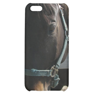 Dark Bay Thoroughbred Horse iPhone 4 Case