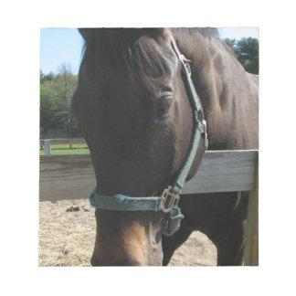 Dark Bay Thoroughbred Horse Notepad