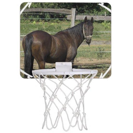 Dark Bay Thoroughbred Horse Mini Basketball Backboards