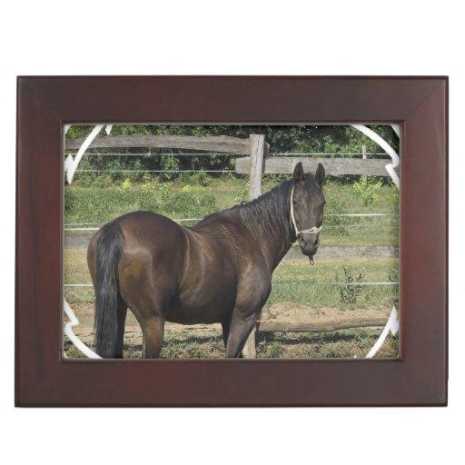 Dark Bay Thoroughbred Horse Keepsake Boxes