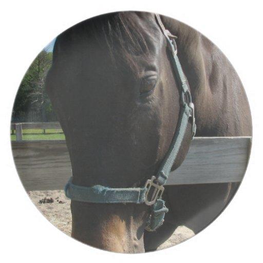 Dark Bay Thoroughbred Horse Plate