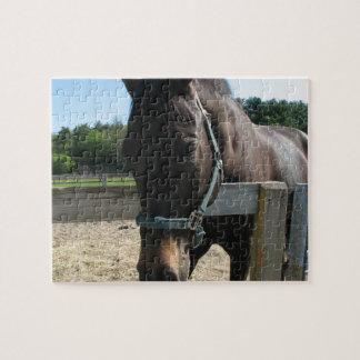 Dark Bay Thoroughbred Horse Puzzle