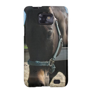 Dark Bay Thoroughbred Horse Samsung Galaxy Case Samsung Galaxy S2 Cover